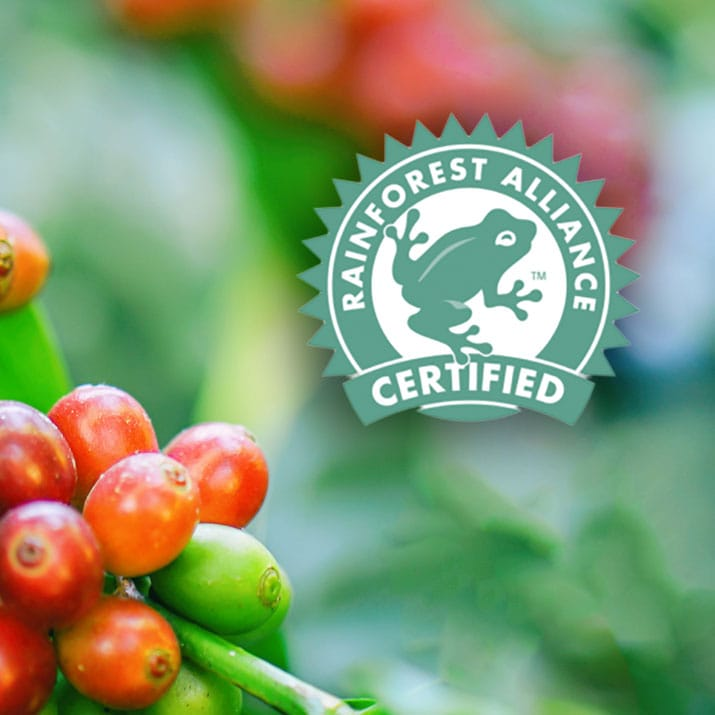 Zertifizierter Kaffee Anbau