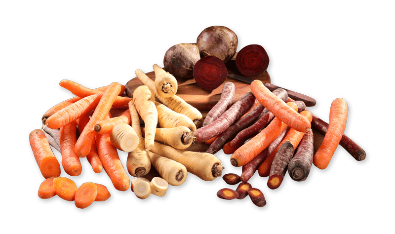 Leckeres Wurzelgemuese zum Herbst in Ihrem Wez