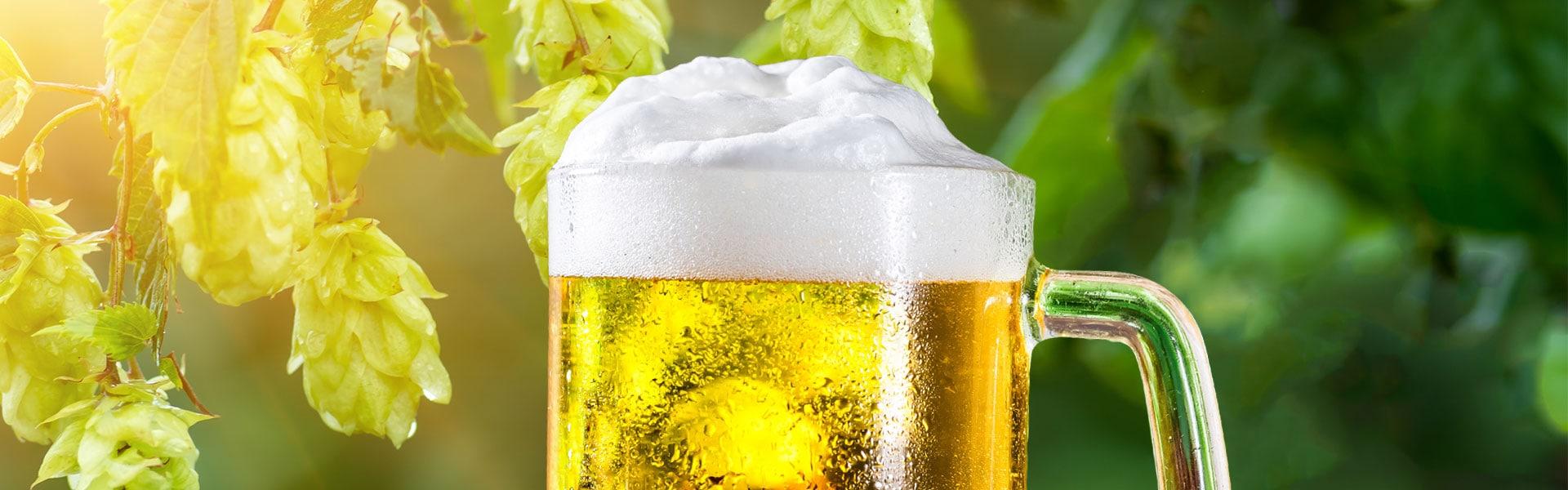 Paulaner Bierfond – Gastro Starthilfe Aktion