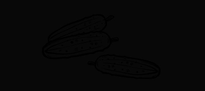 Gewürzgurken selber einlegen